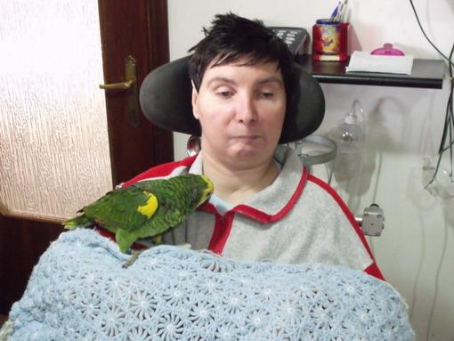 8 dicembre 2011 - Barbara con Chicca, bellissima Amazzone fronte blu, per tentare la pet terapy
